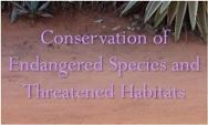 Research paper topics environmental movements